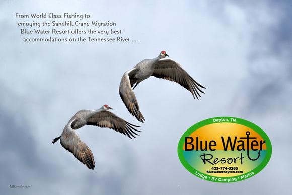 RAMY2024_CF107-Bluewater Resort