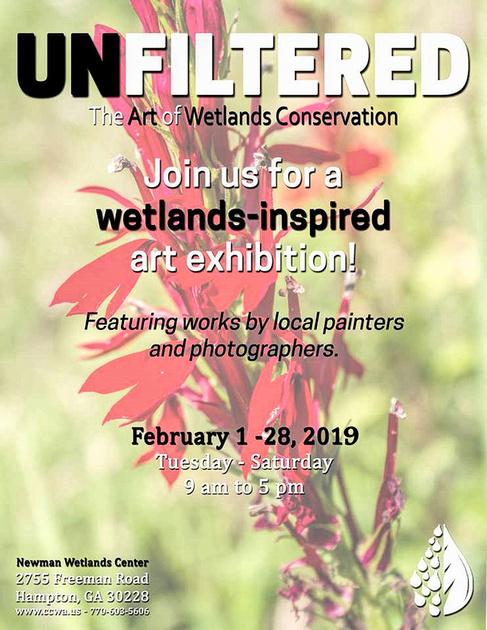 Newman Wetland Center 2019